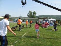 Türkiye'de Alman Çoban Köpeği Yarışmalarında bir ilk